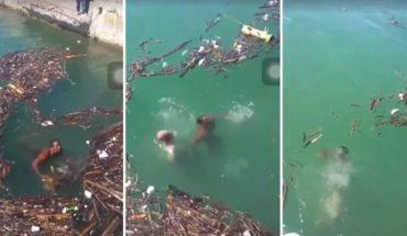 Dos hombres se ahogaron en el río Niagara por saltar a buscar un tronco