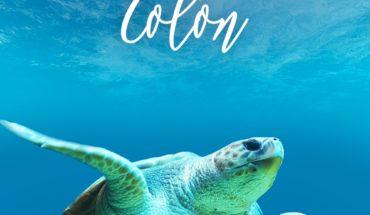 ¡Debemos proteger nuestras playas y océanos reduciendo la cantidad de desperdicios que vertimos al mar, así mantenemos u...