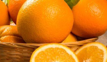 naranjas-variedades-1030x687-1200x423