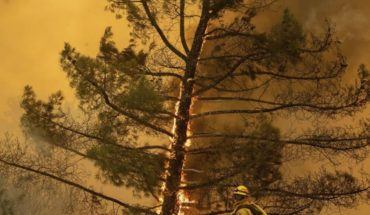 Bomberos combaten gran incendio forestal en California