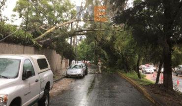 CIPIM se mantiene alerta ante fuerte lluvia en la capital michoacana