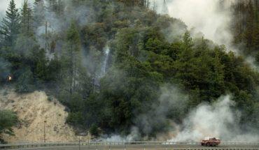 Cinco muertos y 38 mil evacuadas por incendios en norte de California