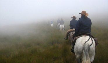 Enjoy the landscapes of the páramo, just an hour outside of Quito. #Travel #Ecuador #Horsebackriding ...