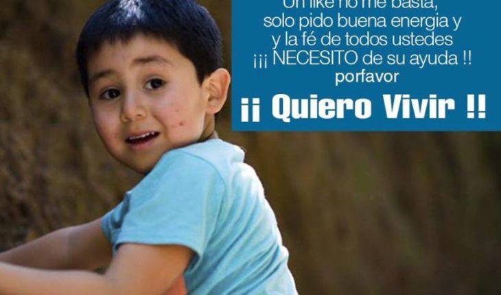 Niño de 5 años es la nueva prioridad nacional para trasplante de hígado
