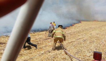 Se registra canalazo a consecuencia del humo por la quema de soca