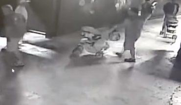 [VIDEO] Se robaron a un tiburón desde un acuario y lo pusieron en un coche para huir en Texas