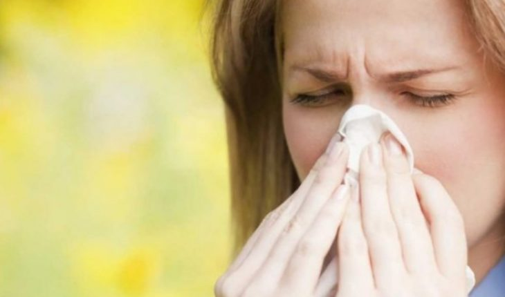 ¿Alérgico? Ahora es el momento para comenzar el tratamiento