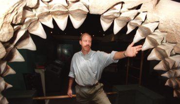 Cómo era el megalodón, el gigantesco tiburón traído al cine