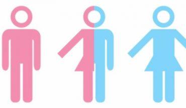 Gobierno alemán aprueba introducir el tercer sexo en registro de nacimiento