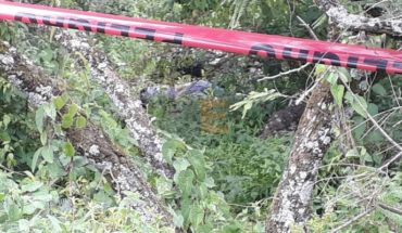Hallan cadáver de mujer en estado de putrefacción cerca del Parque Nacional de Camécuaro, Michoacán