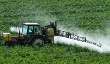Qué es el glifosato, la substancia en los herbicidas más usados del mundo por la cual Monsanto fue demandada
