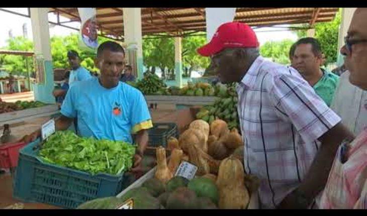 Salvador Valdés Mesa visitó varios polos agrícolas en la capital