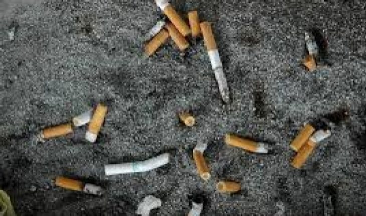4.5 trillion cigarette butts each year pollute nature