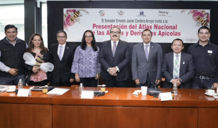 Mexico boasts of the first atlas of bees