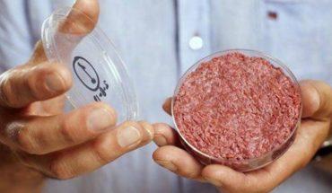 ¿Carne de laboratorio o sacrificio de animales?