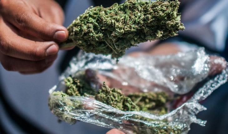 5 ventajas de regular las drogas y cómo beneficiaría a México, según expertos internacionales