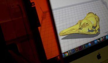 Brasil: impresiones 3D ayudarán a recuperar museo incendiado