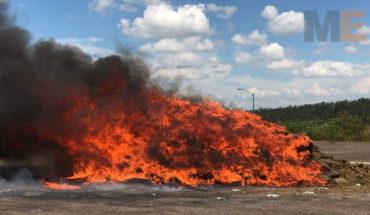 Destruyen más de dos toneladas de drogas decomisadas en Michoacán