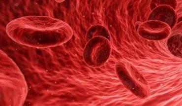 Diagnóstico oportuno y tratamientos innovadores, retos de la hemofilia