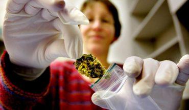 En polémica, uso de cannabis medicinal para menores en P. Rico