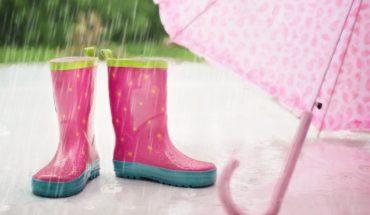 Exceso de humedad genera aparición de bacterias