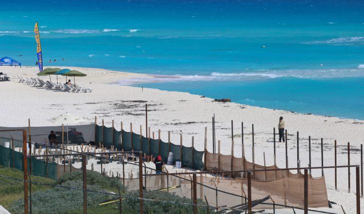 Fonatur vende Playa Delfines pese a ser patrimonio federal