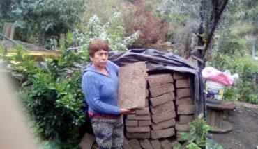 Guillermina Cataldo, la constructora solidaria que está en la final de Nuevos Héroes 2018