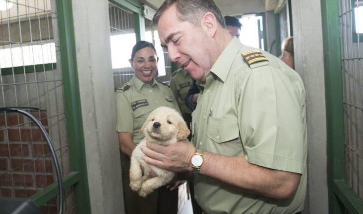 Hermes Soto visitó la Escuela de Adiestramiento Canino tras exitoso desfile de cachorros en la Parada Militar