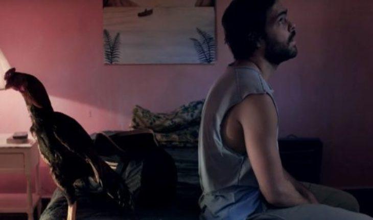 """La espera llega a su fin: adelantan el estreno de la segunda temporada de """"Un gallo para Esculapio"""""""