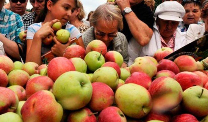 Le vendieron 15 mil manzanas a un cliente y fueron despedidos