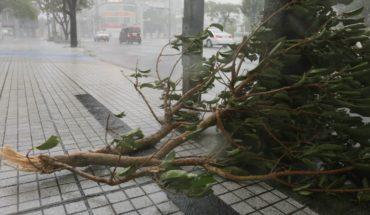 Más de 400 vuelos cancelados ante llegada del tifón Trami