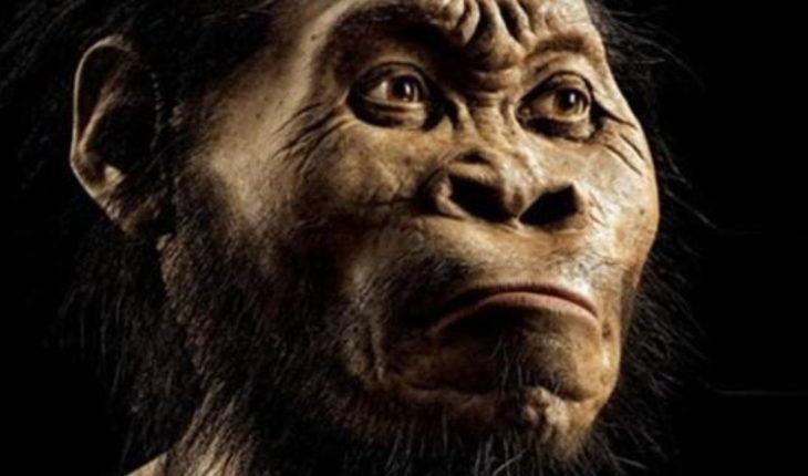 Nunca imaginado: Así se verá el rostro humano en el futuro
