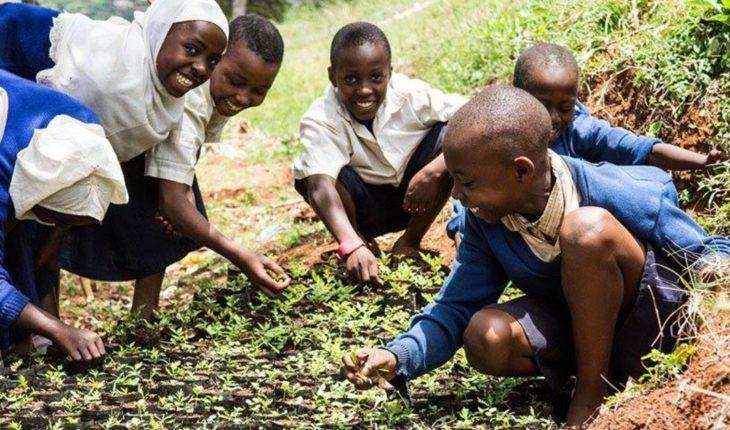 ONU y Banco Mundial presentan un nuevo plan para las hambrunas