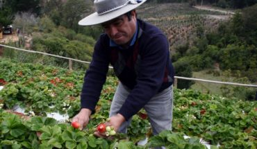 Agricultural production in the world will double in 2050, but with less land and water