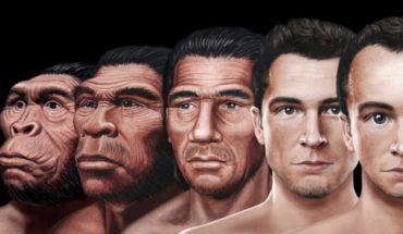 How would the face of the man of the future, according to evolution?