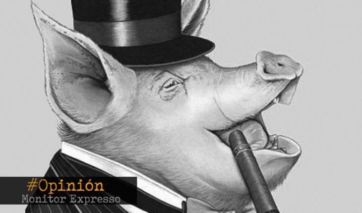 """Un """"cerdo"""" a camino de la Suprema Corte- La Opinión de Teresa Da Cunha Lopes"""
