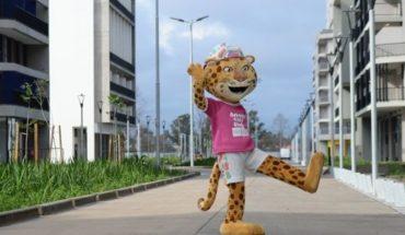 ¿Por qué no se vende Pandi, la mascota de los Juegos Olímpicos de la Juventud?
