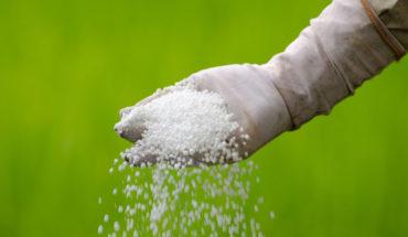 Comunidades p´urhépecha acusan a Sedrua de entregar fertilizantes de mala calidad