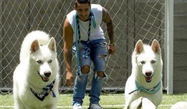 Día Mundial del Animal: conocé a los perros de Maluma