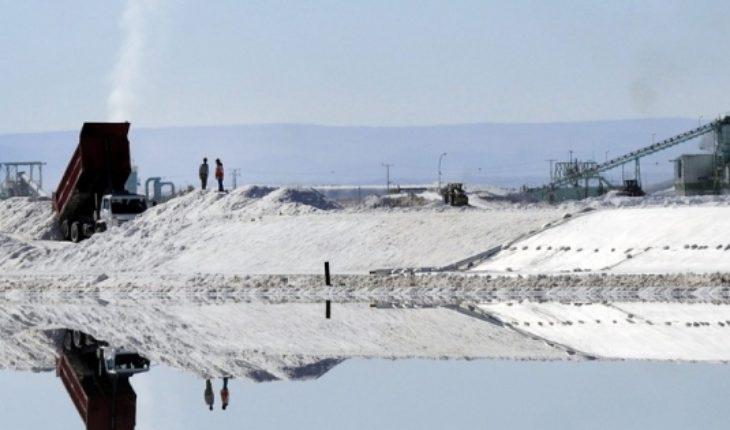 Julio Ponce Lerou arremete contra el fallo del TDLC que pone en jaque el futuro del litio chileno