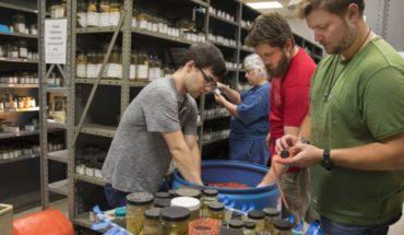 Universidad entrega colección de crustáceos al Smithsonian