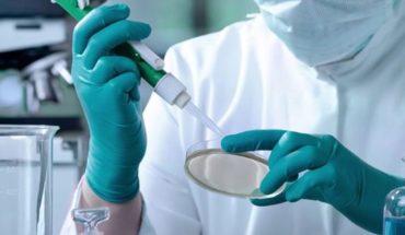 """Fundación Huésped sobre el tratamiento con células madre: """"Esto no es la cura del VIH"""""""