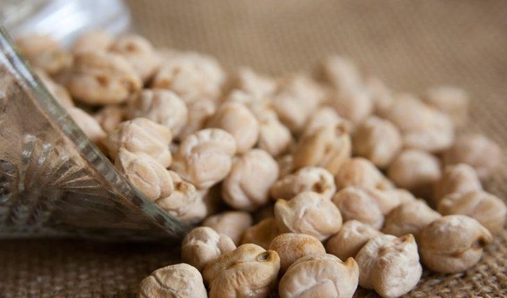 Agrocápsulas | EL DEBATE