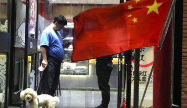 Ciudad china limita presencia de perros en espacios públicos