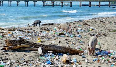 Estas son las empresas que más contaminan los mares en México