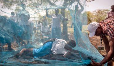 Repuntan muertes por malaria en América en 2017