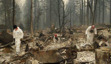 Suman 48 muertos por incendios en el norte de California