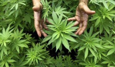 Celebrates PRD resolution on marijuana for recreational use