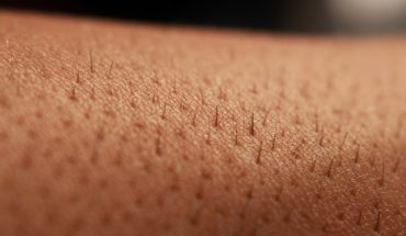 Create photosynthetic skin which can regenerate human tissue