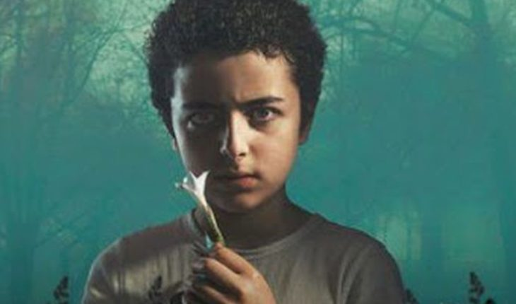 """Deadly plant in the series """"The Sinner"""" exists in Chile: """"Is more dangerous than cocaine"""""""